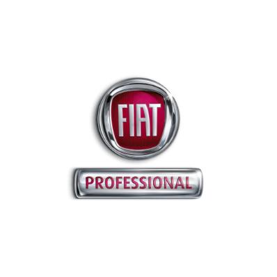 Fiat Professional Logo - Bilpunkten Borås